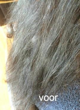 Het haar voor de behandeling met Eslabondexx